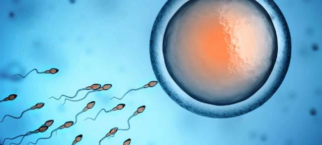 妊娠するから・・・出会い系やネットではじめからセフレ募集は存在しない !
