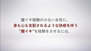 膣イキ記憶術・パーフェクトビデオ8